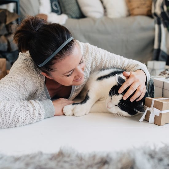Gifts For Cat-Lovers