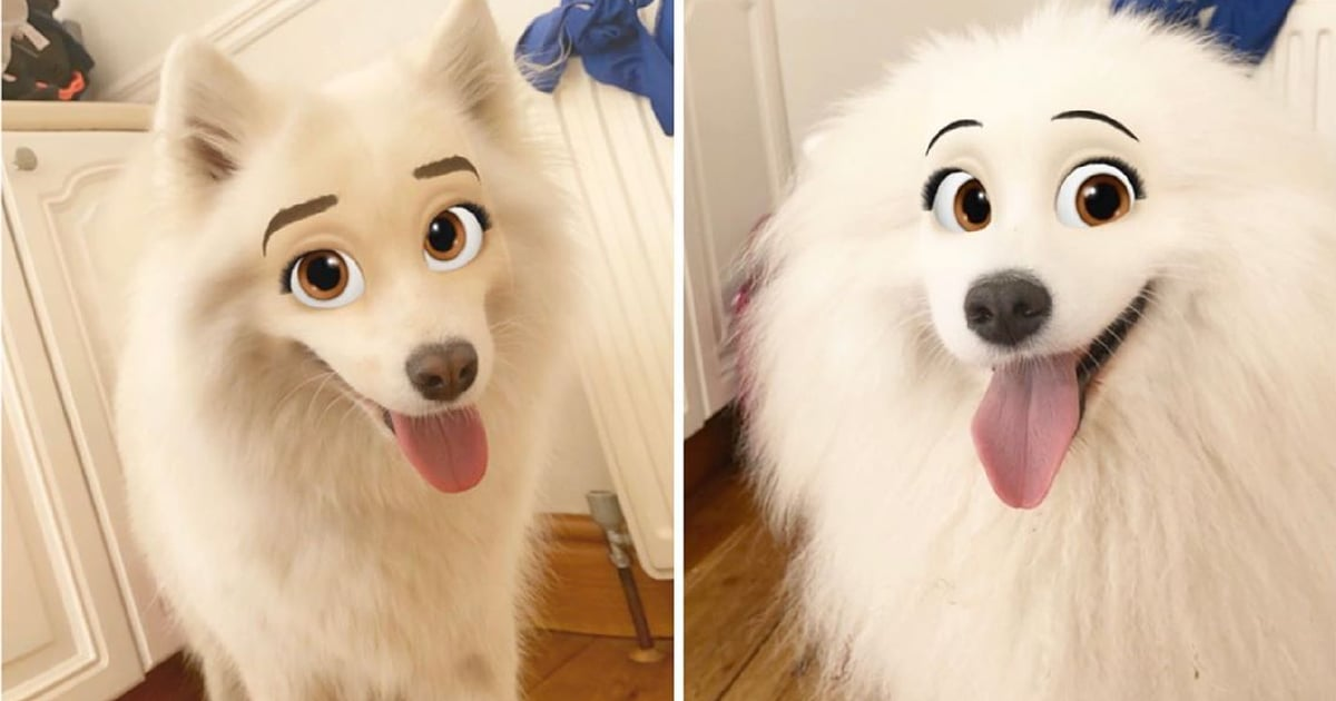 """You Can """"Disneyfy"""" Your Pets With This Handy Snapchat Filter, Because We Have Nothing Better to Do"""