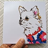 For Fashionable Furballs: Studio Legohead Illustrations