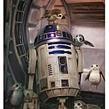 R2-D2 and Porgs Wall Poster Print