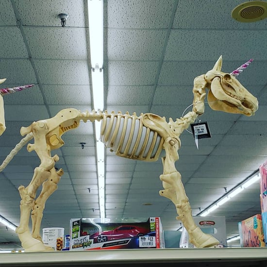 Big Lots Unicorn Skeletons