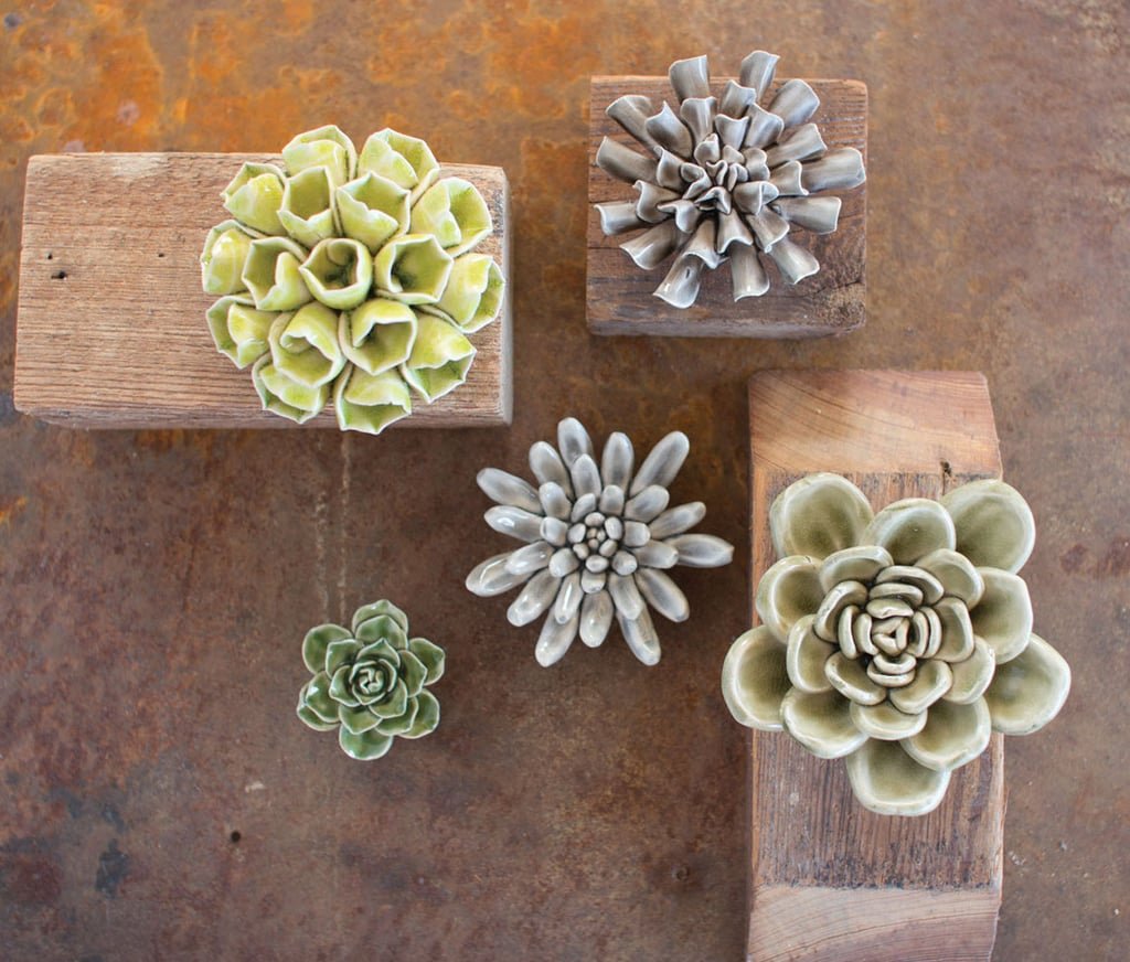 Bellacor Ceramic Succulents