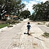 My Post-Irma Street — The American Experience Finalist