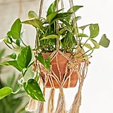 Daisy Macramé Hanging Planter Holder