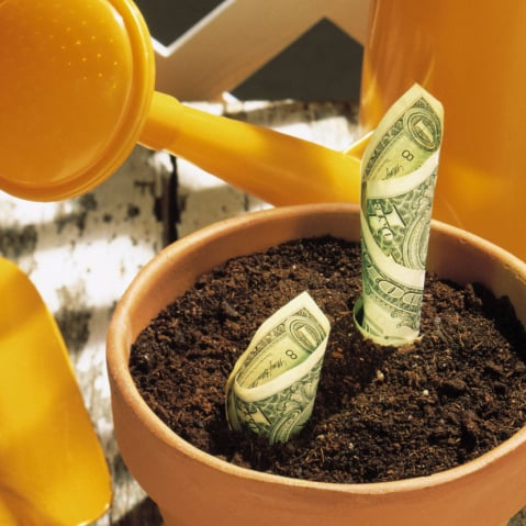 How to Start and Grow Savings