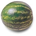 Watermelon-Cucumber Popsicles