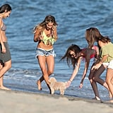Ashley Tisdale and her friends got together on the beach in Malibu for her birthday.