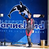 Marion Cotillard learned how to be a whale trainer in Antibes, France.