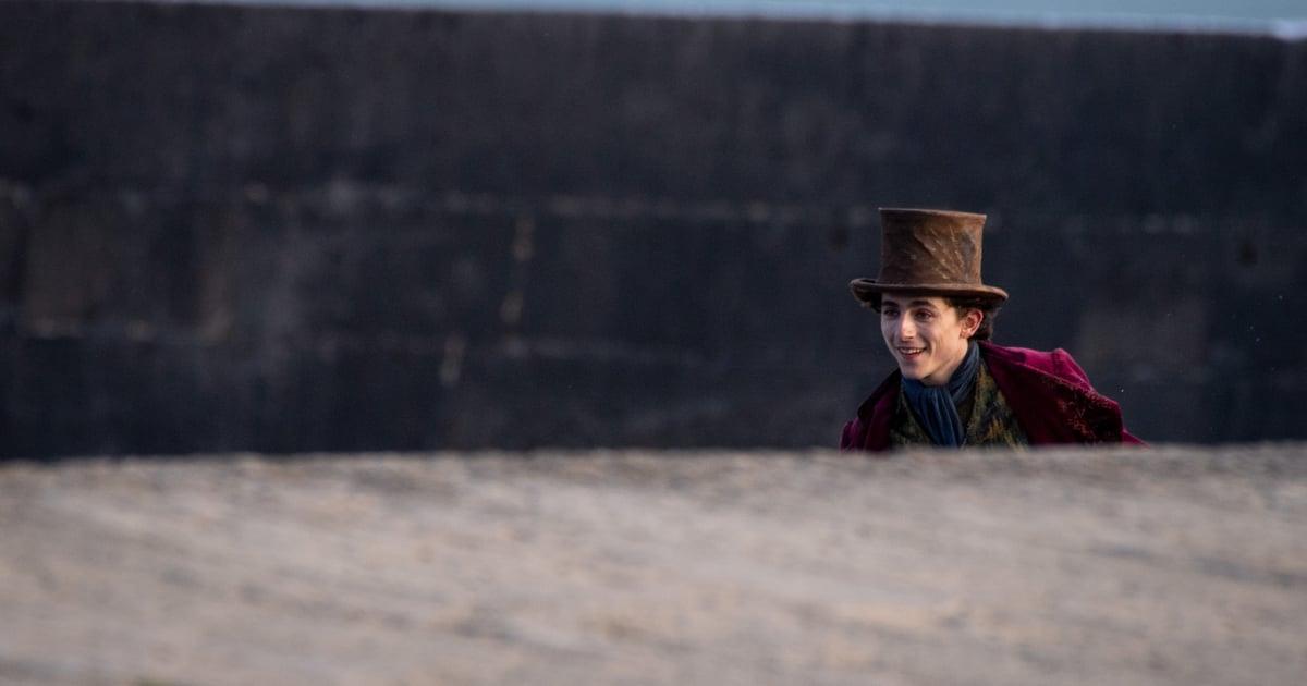 ¿Timothée Chalamet realmente canta en Wonka?