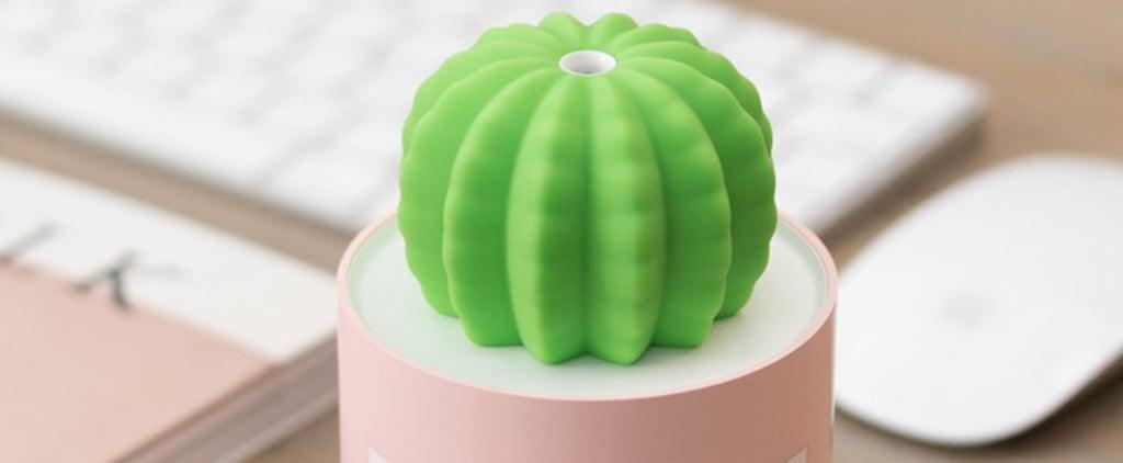 Portable Cactus Humidifier