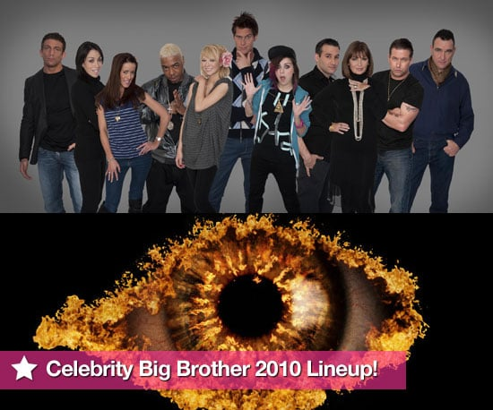 photos of celebrity big brother 2010 housemates official