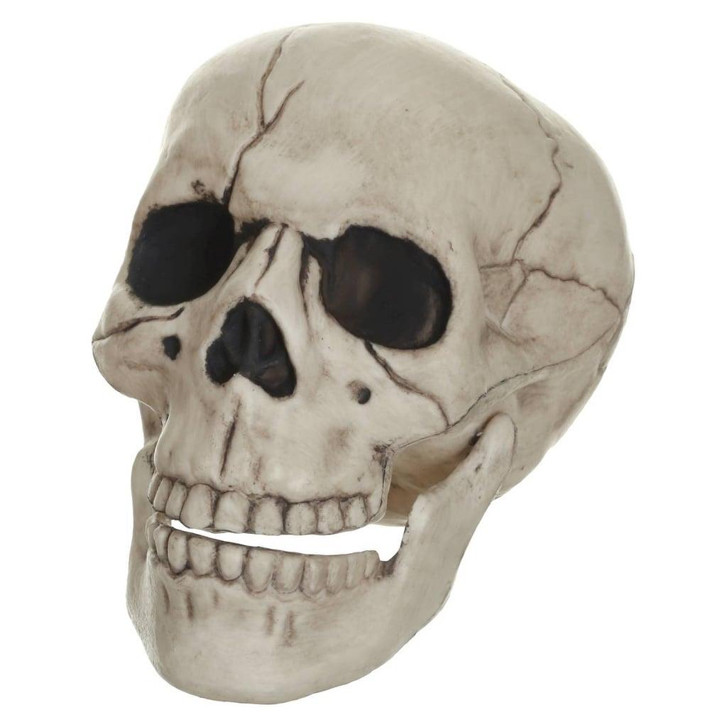 Posable Skull