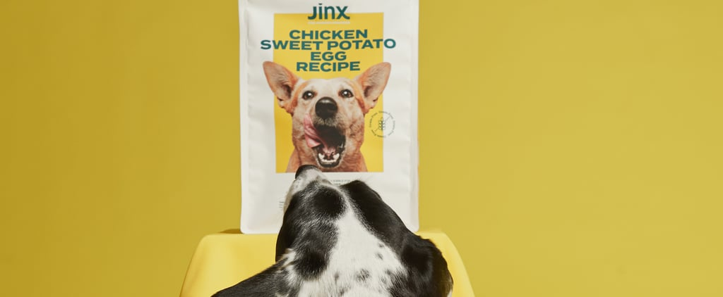Jinx Dog Food Review