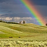 Because without rain, there would be no rainbows.