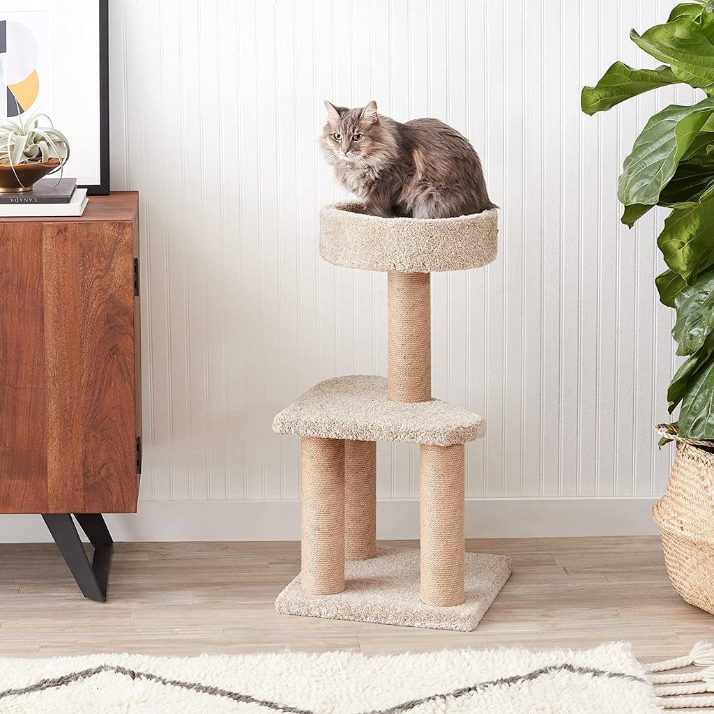 Amazon Basics Medium Cat Condo Activity Tree Tower with Scratching Post Toy