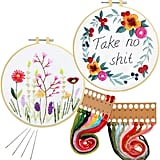 Nuberlic 2-Pack Cross Stitch Kit for Beginners