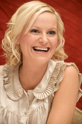 Wonder Woman:  Amy Poehler