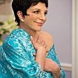 "Liza Minelli as ""Lucille 2"" on Arrested Development."