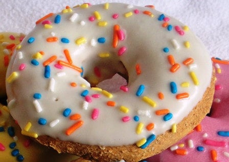 If your pooch is a nut for colorful treats, indulge him with Cheddar cheesy doughnuts complete with vibrant sprinkles.