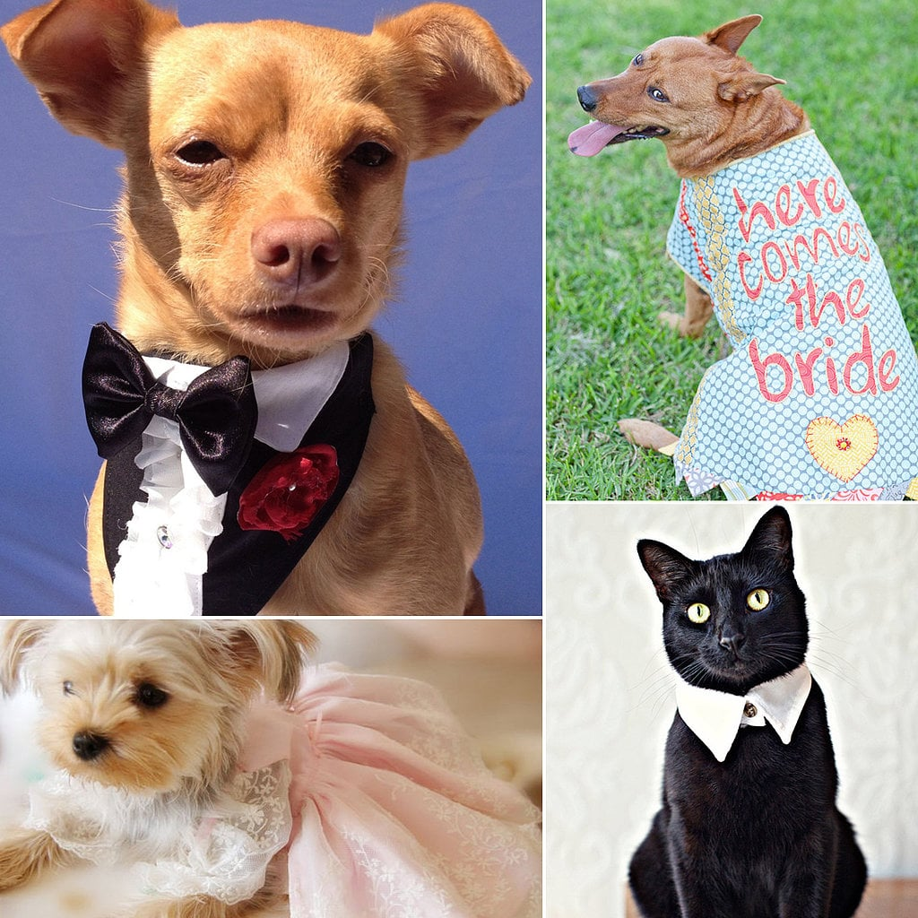 Head over to POPSUGAR Pets to find the perfect little bridesmaid or groomsman outfit for your furry friend and a few ideas for how to include pets in a memorable way on your special day.