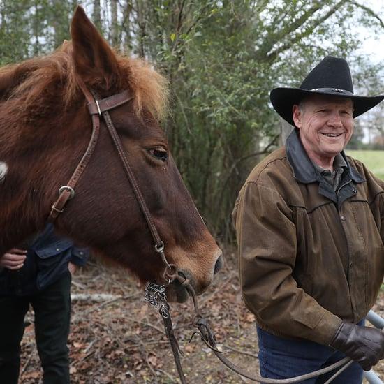 Roy Moore's Horse Sassy Parody Twitter Account