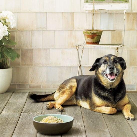 Doggie Tuna Casserole . . . It's What's for Dinner