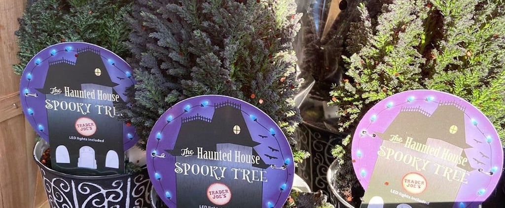 Trader Joe's Is Selling Spooky Light-Up Trees For Halloween