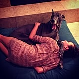 Chrissy snuggled with a friend's Great Dane. Source: Instagram user chrissy_teigen
