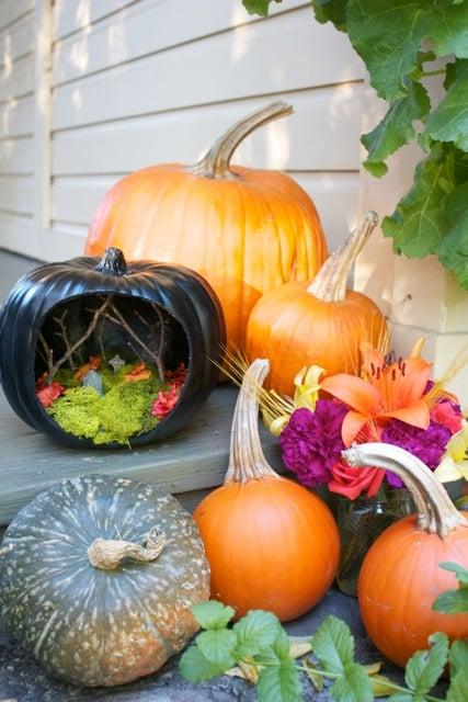 Black Pumpkin With Bright Colors Scene