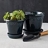 Bergs Glazed Palace Pot and Saucer