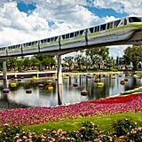 If you're park hopping, take the monorail.