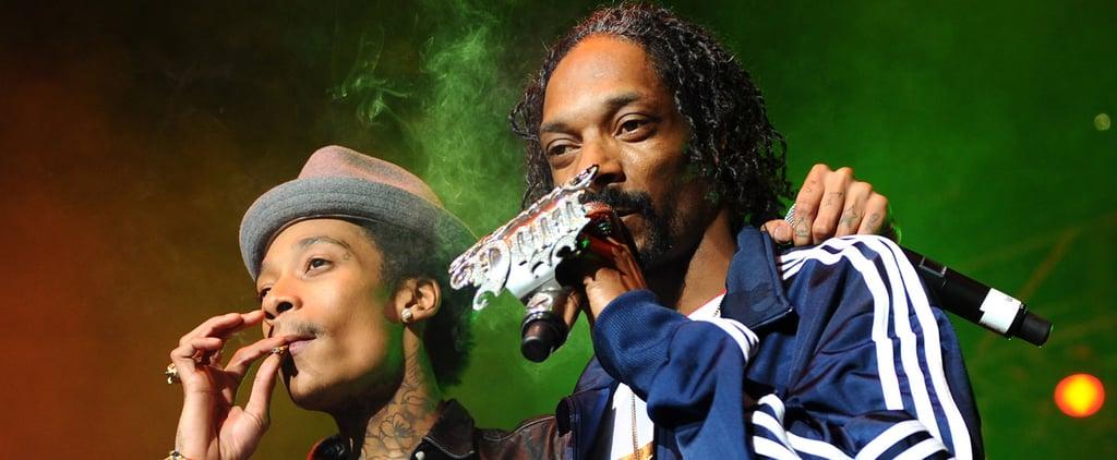 Railing Collapse at Snoop Dogg Wiz Khalifa Concert Video
