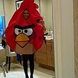 Sofia Vergara as an Angry Bird