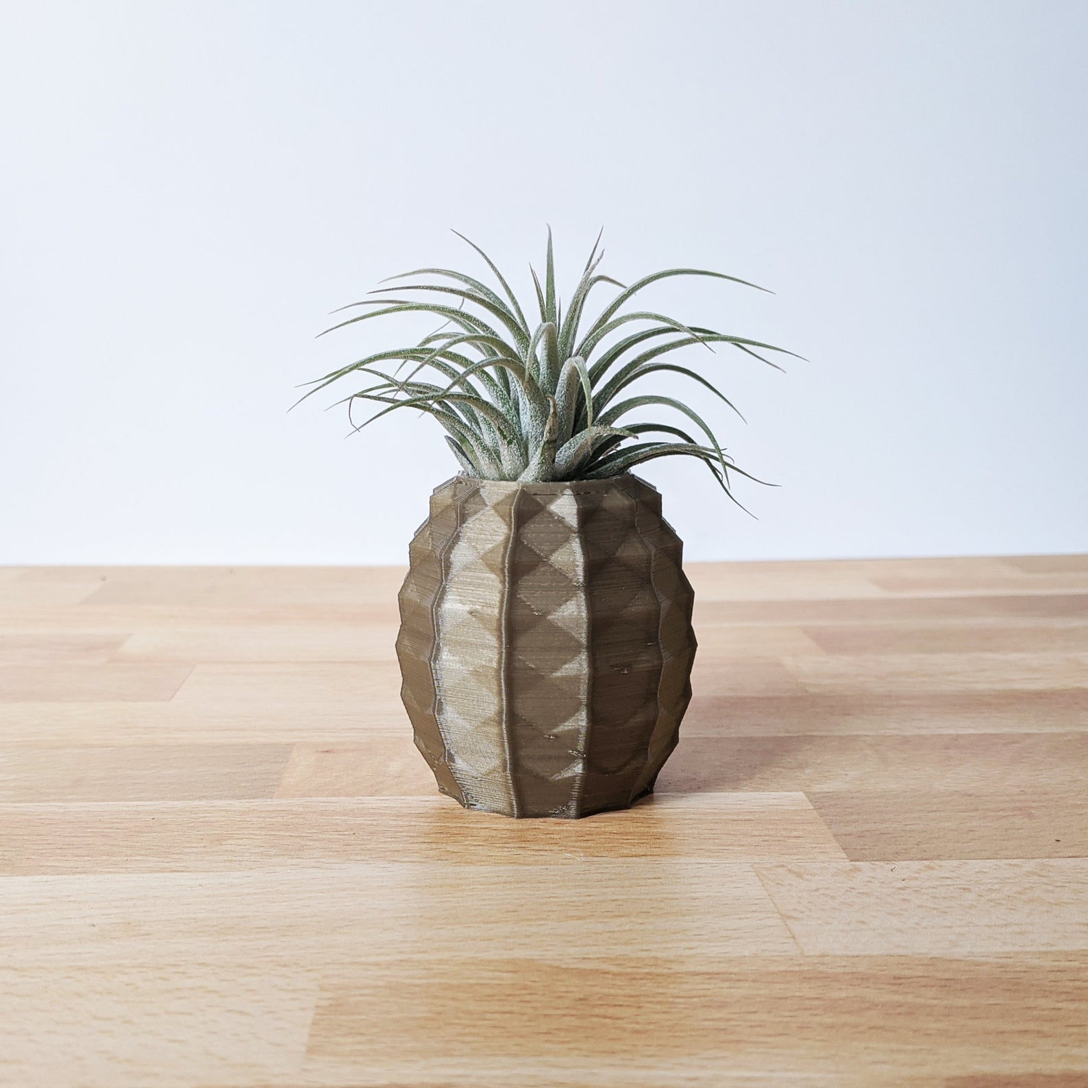 Etsy S Pineapple Air Plant Holders Are Beyond Cute Popsugar Home