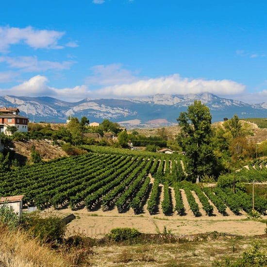Best Wine Regions in Spain