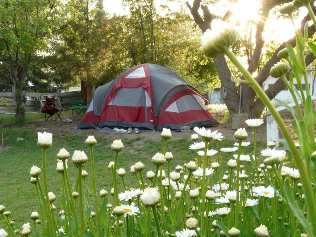 How to Camp in Your Backyard | POPSUGAR Moms