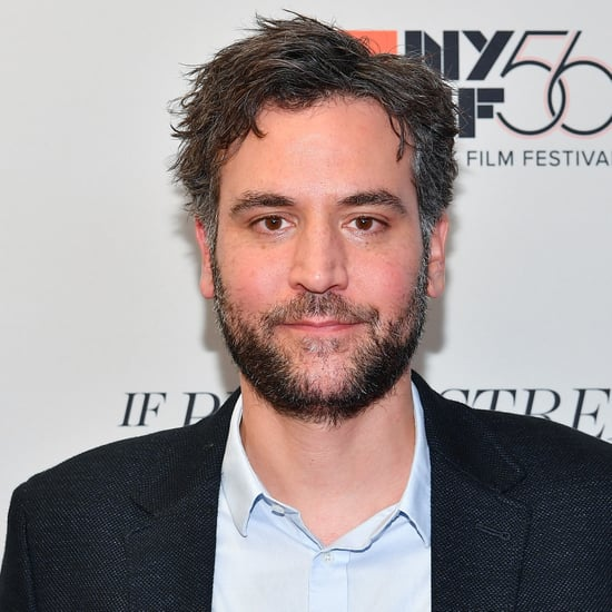 Josh Radnor on Grey's Anatomy as Meredith's Love Interest