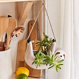 Best Gifts For Plant-Lovers