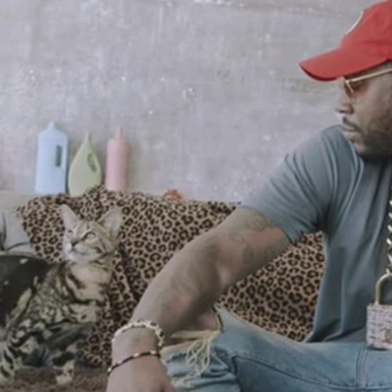 2 Chainz Plays With Kittens in GQ Video