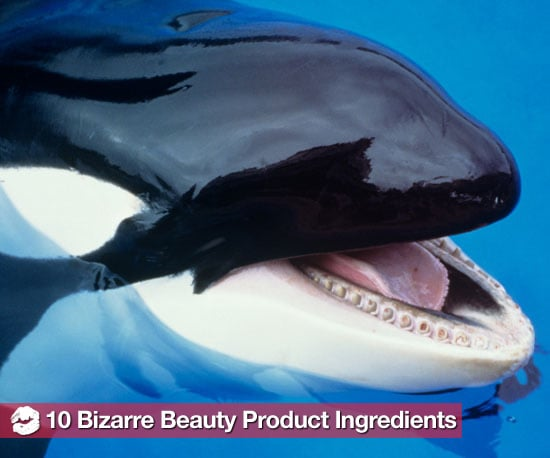 The Grossest, Weirdest Beauty Product Ingredients