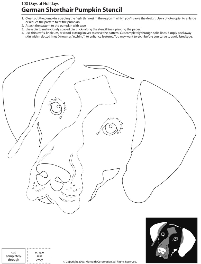 Downloadable dog breed pumpkin stencils popsugar home