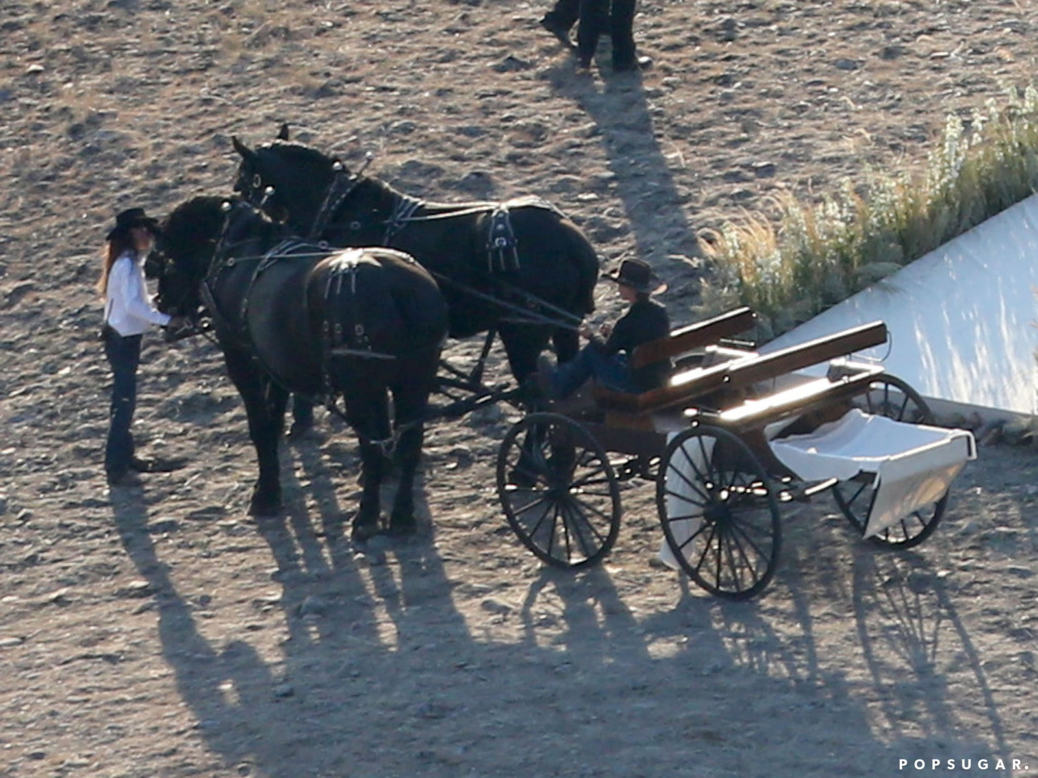 A horse-drawn carriage waited for Kate and Michael beside the ceremony site.