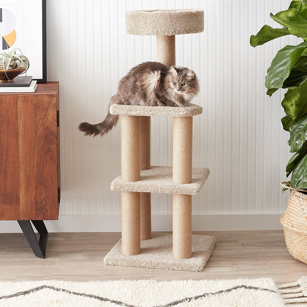 Top Cat Gifts on Amazon 2018