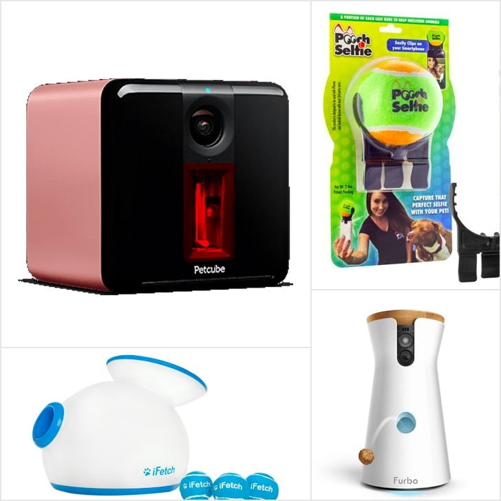 Tech Gifts For Pet Owners
