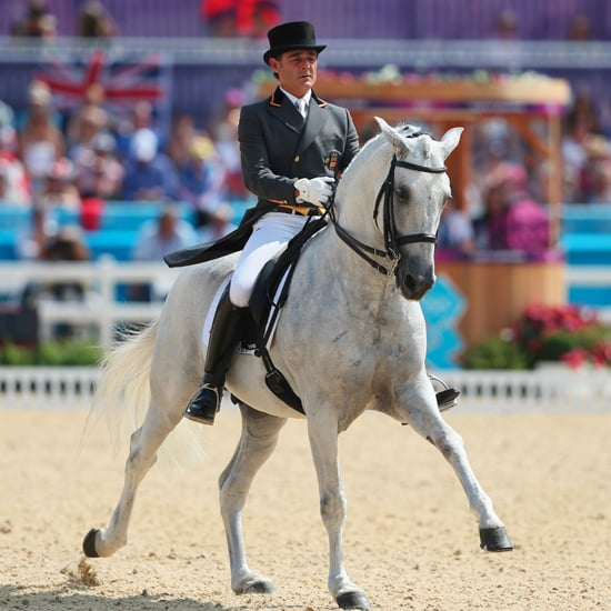 equestrian at the 2012 summer olympics horse breeds and types in olympic equestrian sports popsugar pets