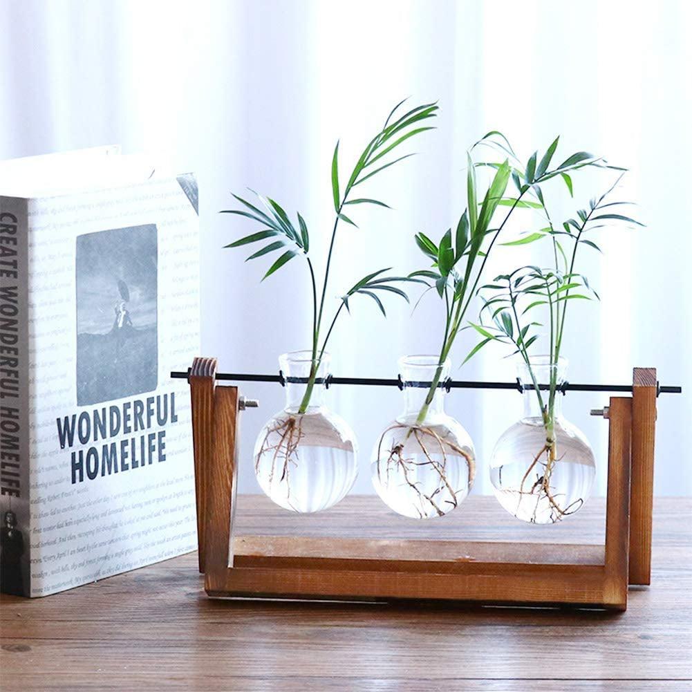 Desktop Glass Planter Vase