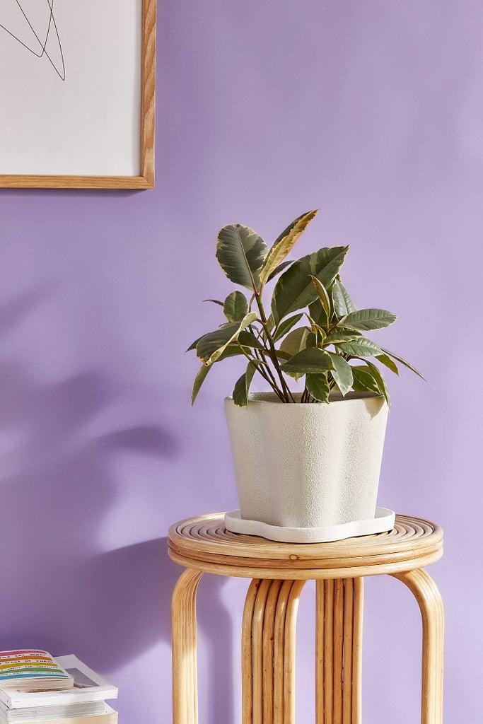 Ripple Planter