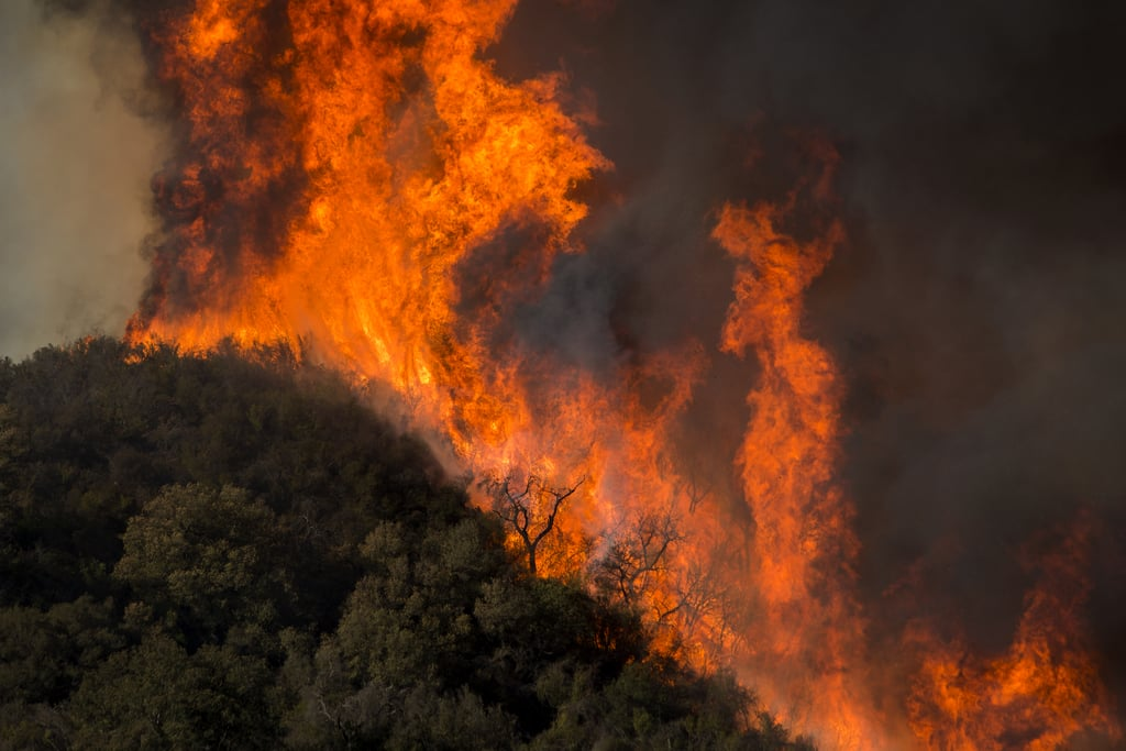 Horrifying flames sweep across Malibu Creek State Park during Woolsey Fire.