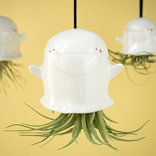 Shop Etsy's Ghostly Air-Plant Holders (They're Adorable)