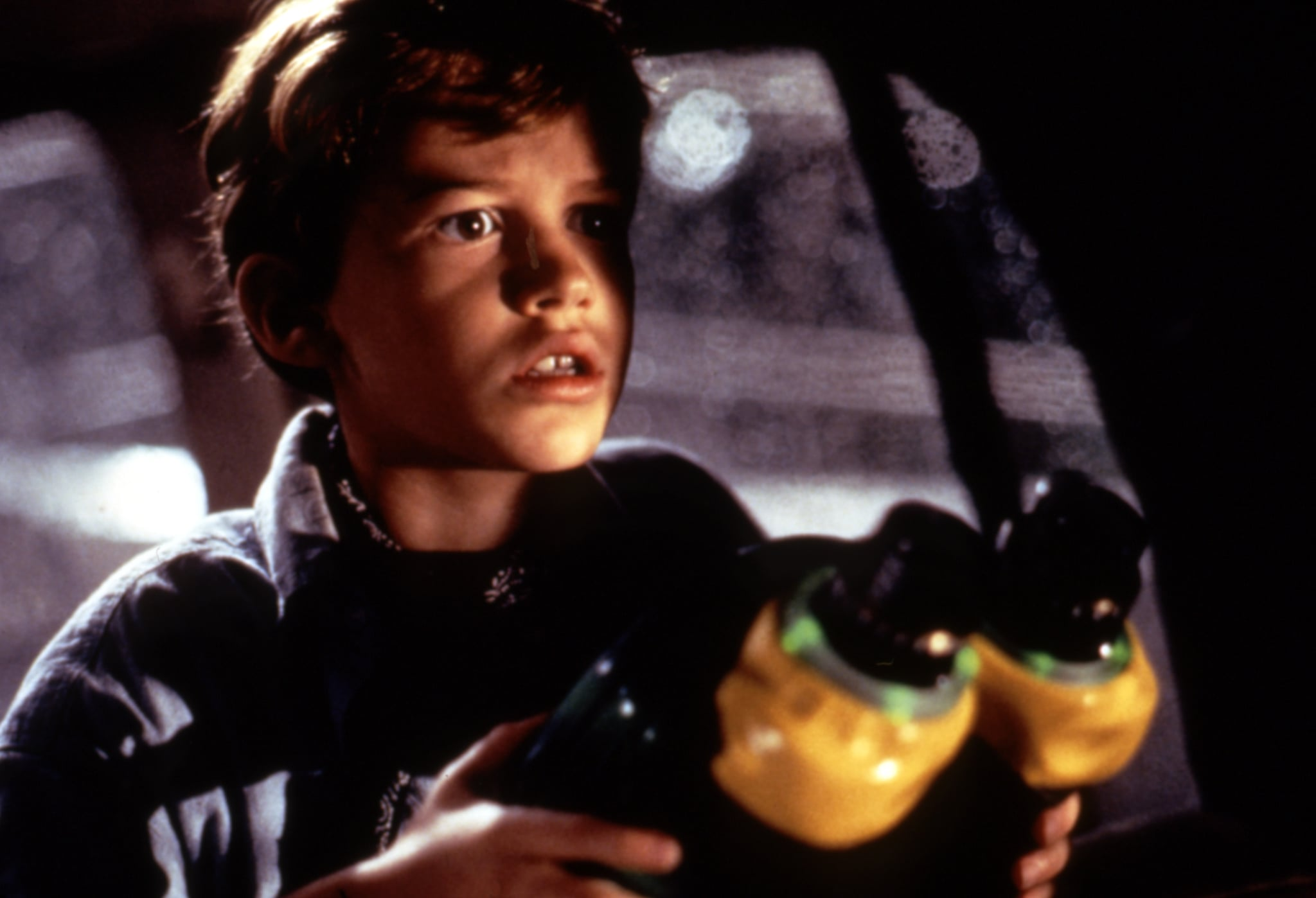 JURASSIC PARK, Joseph Mazzello, 1993, (c)MCA/courtesy Everett Collection